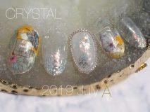 定額Aコース Paraジェル¥13,500 カルジェル¥12,000 ご新規様20%オフ    ボタニカルアートネイル design by OGURA